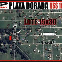 PLAYA DORADA - EL GORRION